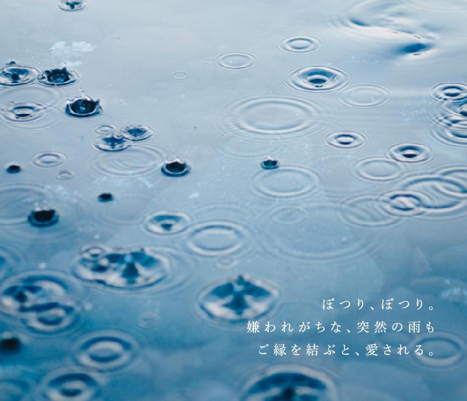 ぽつり、ぽつり。嫌われがちな、突然の雨もご縁を結ぶと愛される。